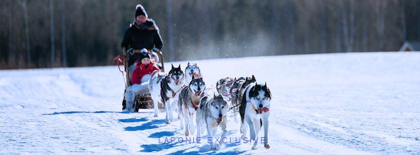 voyage sejour laponie finlande suede husky traineau de chiens huskies musher ferme eleveurs lapons